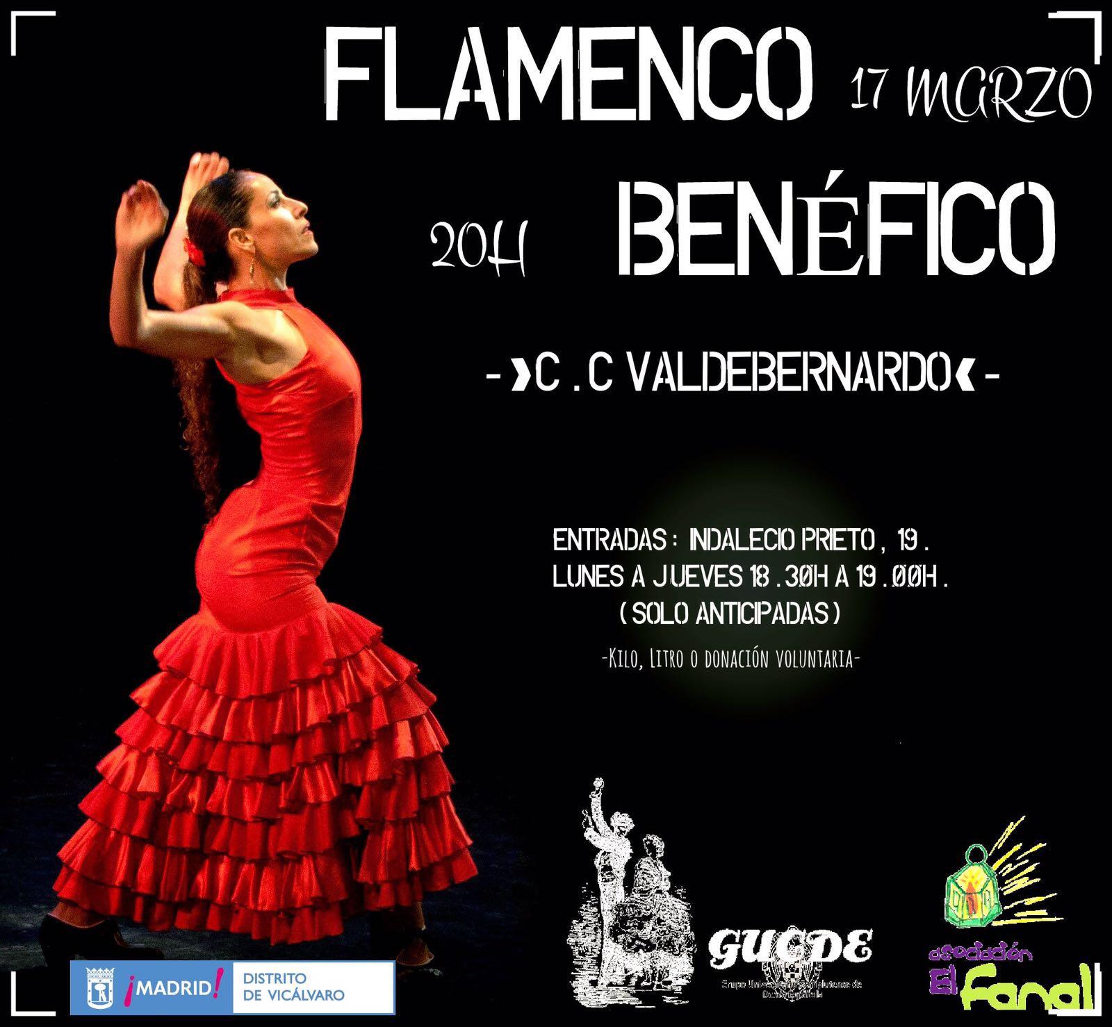Espectáculo Flamenco Benéfico, Valdebernardo – Asociación El Fanal