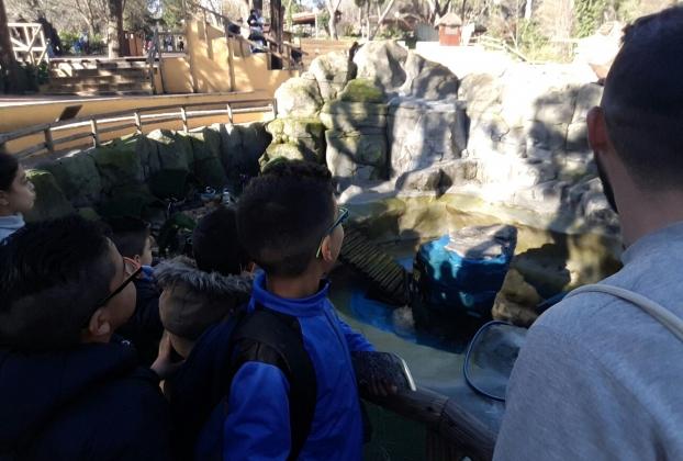 zoo campa valdebernardo